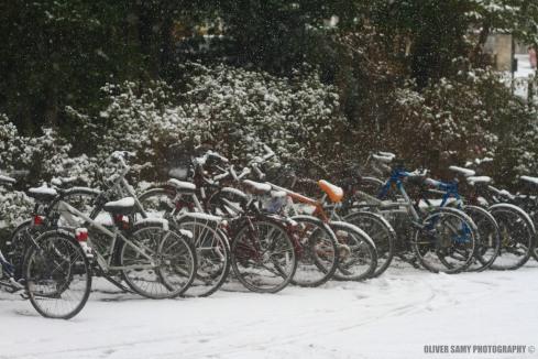 Bit of the snow!